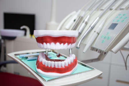 close up of dentists tools and artificial jaws in modern dental clinic Reklamní fotografie
