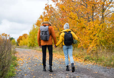 back view of couple hikers with backpacks walking in autumn forest Reklamní fotografie