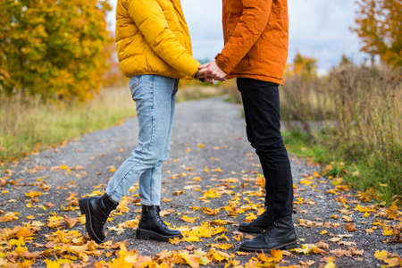 autumn and love concept - close up of young couple in love posing in autumn park Reklamní fotografie