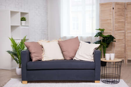 modern interior - bright living room with sofa, pillows, plants and folding screen