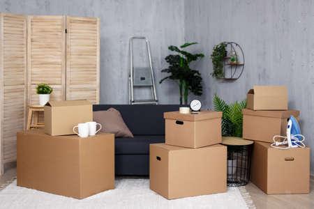 moving day concept  - brown cardboard boxes with belongings and potted plants stacked in new house