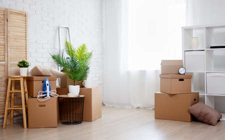 moving day concept - stacked cardboard boxes, houseplant and other domestic things in living room in new house