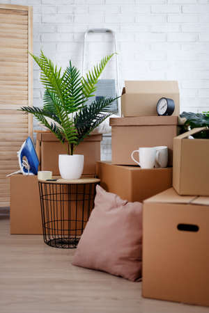 close up of brown cardboard boxes, houseplants and other domestic things in living room sfter moving day