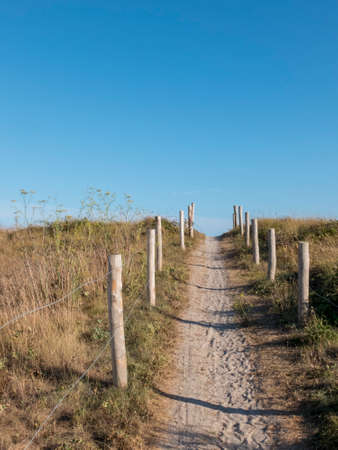 Access path to the beach dunes. Wood bollards delimit the walkable area. Cloudless blue sky.