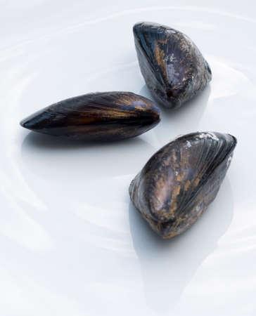 almeja: Three single sea mussels on a white ceramic plate.