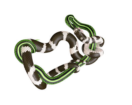 3D Illustration of a California King Snake Swallowing a Green Snake