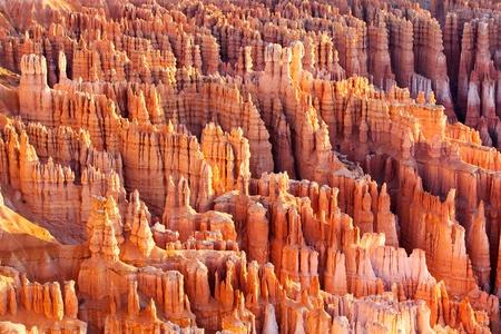 hoodoos: Bryce Canyon Hoodoos at sunrise, Utah, USA