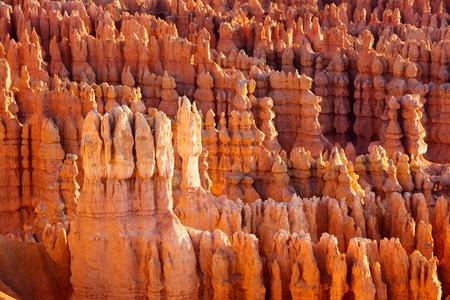 bryce: Bryce Canyon Hoodoos at sunrise, Utah, USA