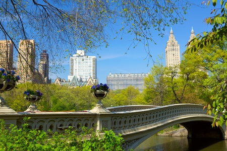 central park: Bow Bridge over The Lake at Central Park in New York City