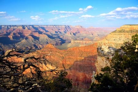 south rim: Grand Canyon from South Rim, Arizona, USA