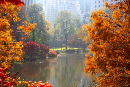 Central Park in autumn, The Pond and Manhattan skyscrapers, New York City Archivio Fotografico