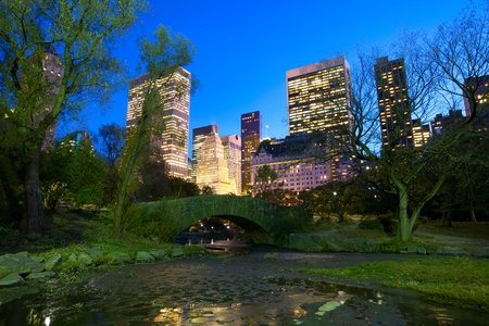 Central Park with Manhattan skyline at dusk, New York City photo