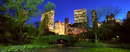 Central Park panorama with Manhattan skyline at dusk, New York City photo