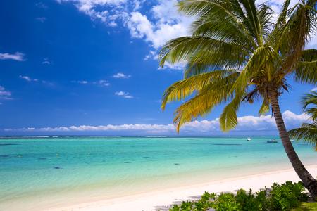 White sand beach in Mauritius Island