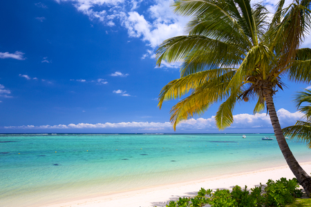 mauritius: Wit zand strand in Mauritius