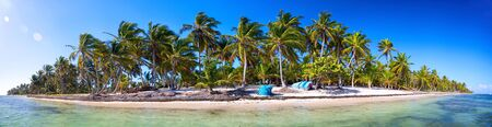 dominican republic: Panoramic view of tropical beach with palms, Dominican Republic