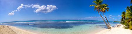 Panoramisch uitzicht op tropisch zandstrand met palmbomen