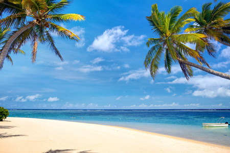 Perfect tropical beach with palms and sand
