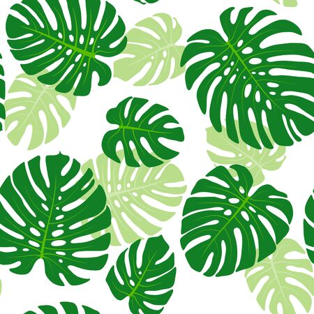 monstera leaf: Seamless pattern with tropical leaves of monstera