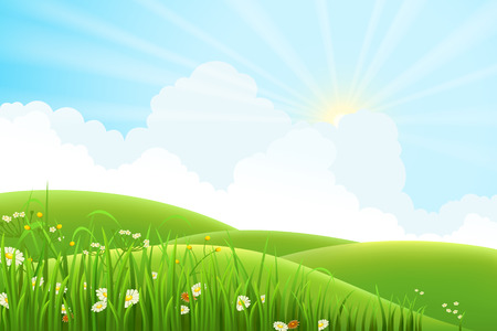 sunlight sky: Summer sunny meadow landscape, vector illustration