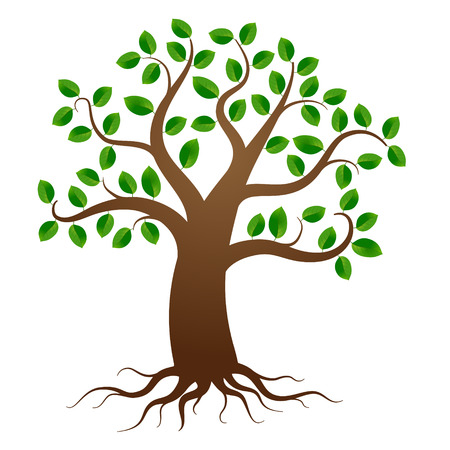 Green tree with roots on white background Illustration