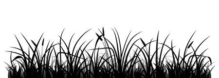 meadow  grass: Meadow silueta hierba, ilustraci�n vectorial