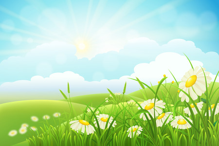 Summer meadow landscape with green grass, flowers, hills, clouds and sun