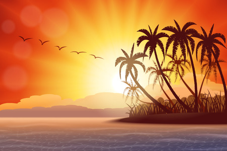 bird of paradise: Tropical island with palms at sunset , vector illustration