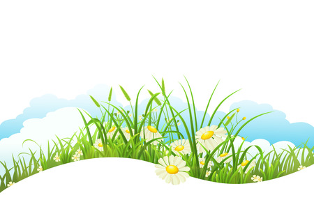 grass flowers: Meadow with green grass and flowers wave banner Illustration