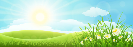 Summer meadow landscape with green grass, flowers, hills and sun 矢量图像