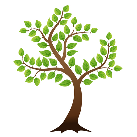 single tree: Vector green tree on white background, vector illustration