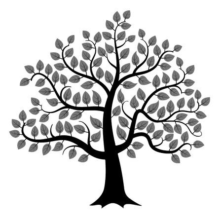 fekete-fehér: Fekete fa sziluett elszigetelt fehér háttér, vektoros illusztráció