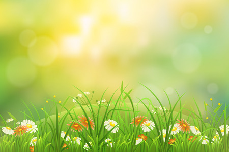 summer nature: Summer nature background with green grass and flowers Illustration