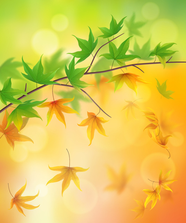 alling: From summer to autumn nature background with alling leaves Illustration