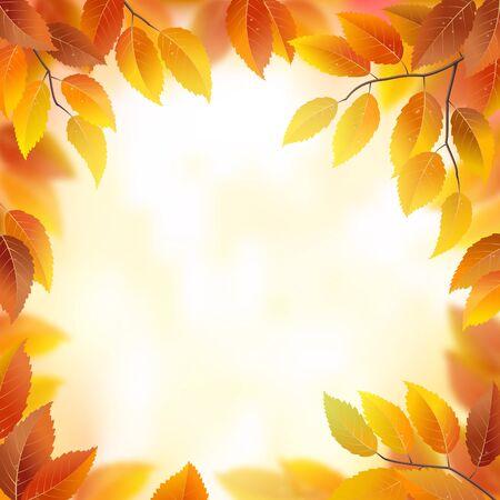 leaves frame: Hojas de oto�o marco de fondo vector de la naturaleza