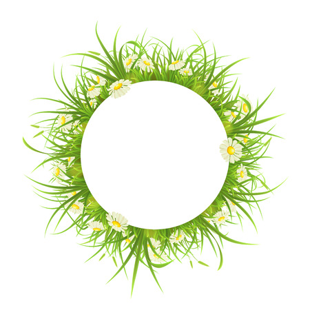 tuft: Round frame with green grass and daisies on white background