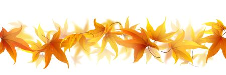Autumn maple leaves falling in line isolated on white