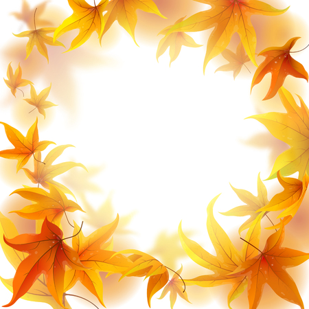 waterdrops: Autumn frame with falling maple leaves on white background Illustration