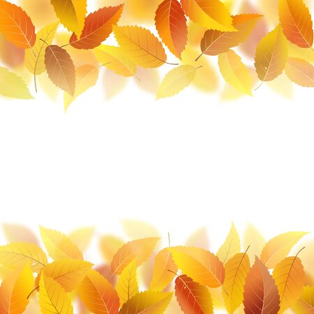 fallen: Nature pattern with fallen autumn leaves, vector illustration