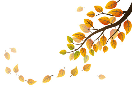 falling leaves: Autumn branch with falling leaves on white background Illustration