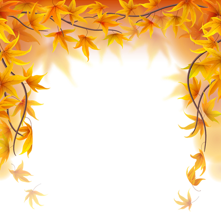 frond: Autumn branches frame with maple leaves on white background Illustration