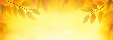 frond: Autumn leaves frame background, vector illustration Illustration