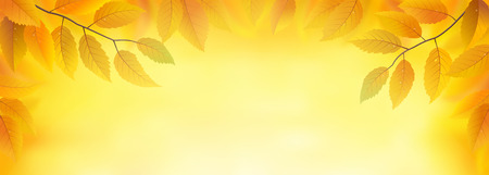 waterdrops: Autumn leaves frame background, vector illustration Illustration