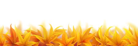 fallen: Seamless pattern with fallen autumn maple leaves