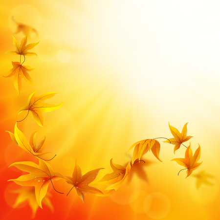 spinning: Autumn background with falling and spinning maple leaves Illustration