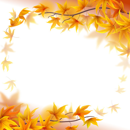 fronds: Autumn branches with maple leaves on white background