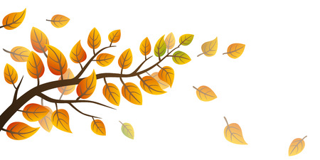 Autumn frond with falling leaves on white background