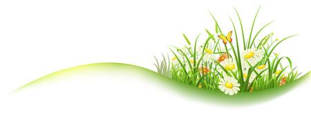 Printemps bannière avec de l'herbe verte et des fleurs, illustration vectorielle