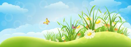 Voorjaar weide achtergrond met gras, bloemen en hemel