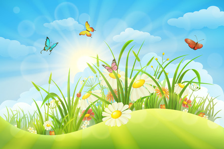 Spring summer meadow background with grass, flowers, sun and butterflies